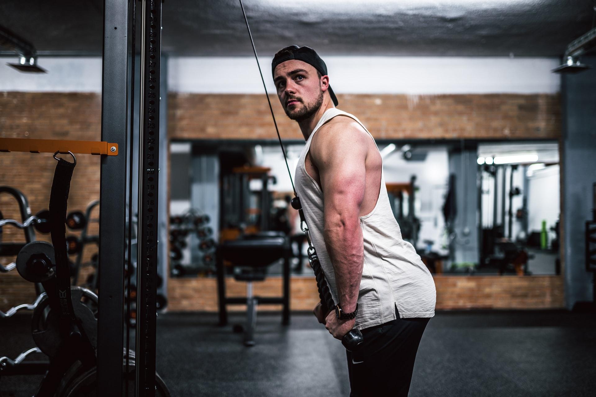 Stretching & Beginner Workout